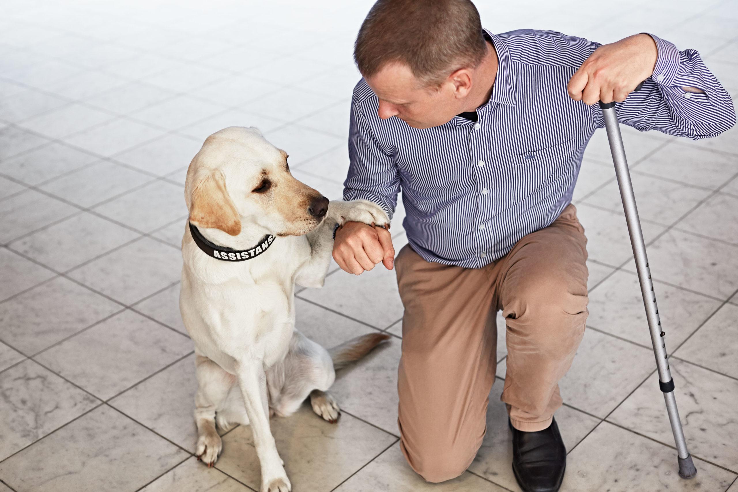 Bild på Scandics tillgänglihgetsdirektör magnus Berglund med sin servicehund Dixie.